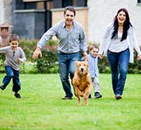 Pet Allergy Treatment in Southlake, TX